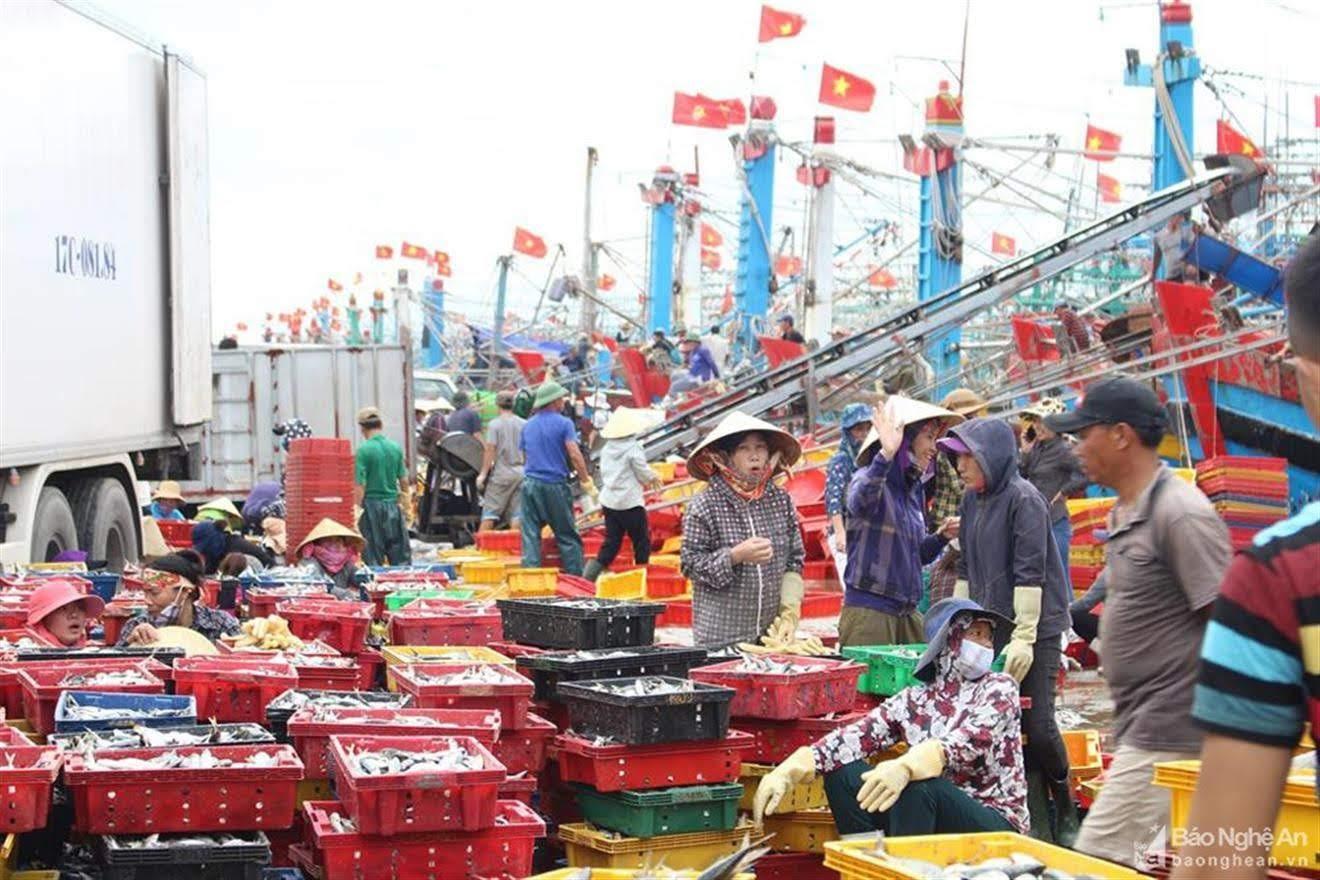 Những chuyến tàu về đầy ắp cá tôm khiến cho cuộc sống bà con ngư dân ở Quỳnh Lưu  ngày càng no đủ và góp phần phát triển KT-XH của địa phương