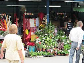 Photo: Day 89 - Market in Veliko Turnovo