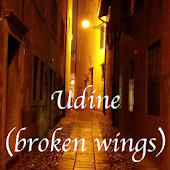 Udine (broken wings)