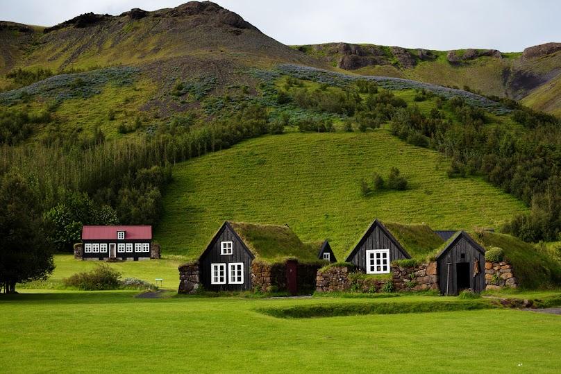 Stare domy z zielonymi dachami