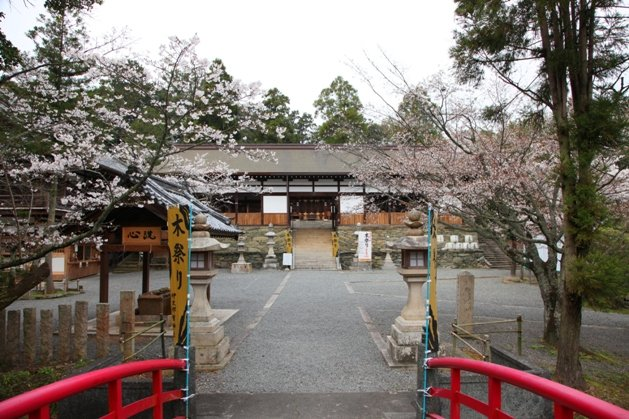 日本 關西 – 飄櫻幻景‧和歌山城 | 在天空上.............用我的愛去畫夕陽虹 – U Blog 博客