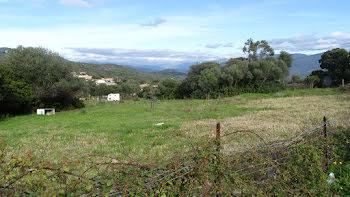 terrain à Serra-di-Ferro (2A)