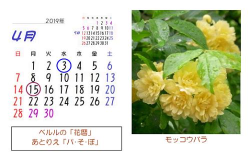 4月の花暦