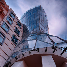 The Dancing House by Michal Fokt - Buildings & Architecture Office Buildings & Hotels ( dancing, prague )