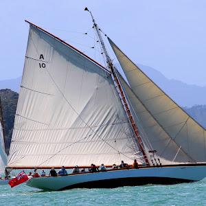 regatta 6.jpg