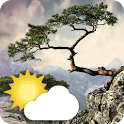 Realistic Weather All Seasons Live Wallpaper icon