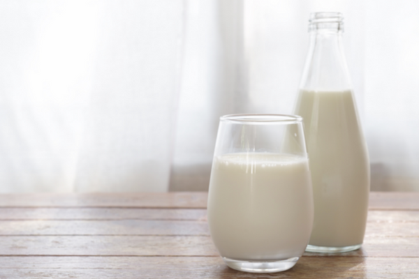 goat milk in a carafe and glass