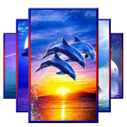 App Insights Dolphin Wallpaper Hd Apptopia