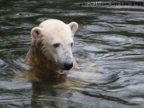Photo: Noch ein kurzes Bad...