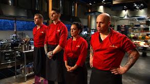 All Stars: Food Network Star Contestants thumbnail