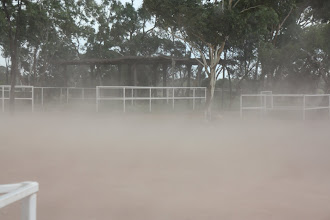 Photo: Year 2 Day 218 -  Dust Storm at Curtin Springs Cattle Station #2