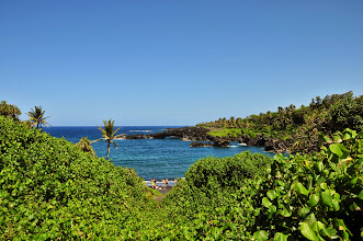 Photo: Black sand beach, emerges out of the forest.