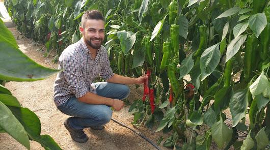 ANECOOP impulsa cultivos alternativos para sus agricultores almerienses