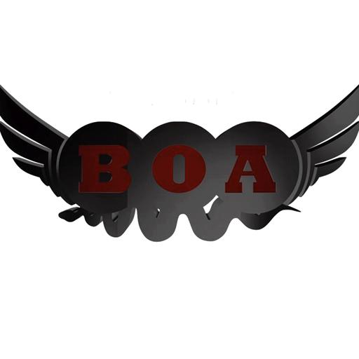 Barons Of the Air 娛樂 LOGO-玩APPs