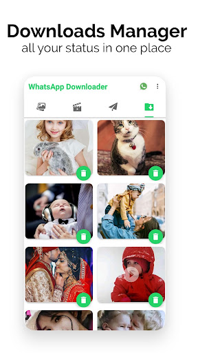 Status Saver Plus for WhatsApp HD Photo And Video screenshot 3