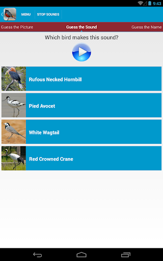Asian Birds Sounds Free App Report on Mobile Action - App Store
