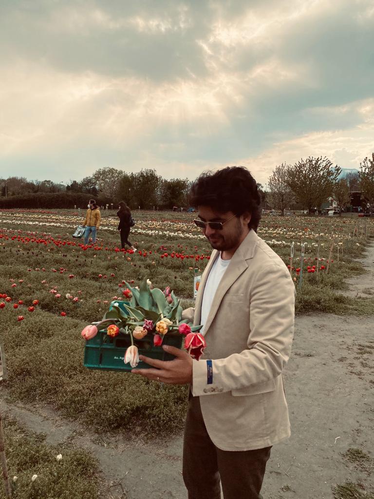 Distesa dei tulipani di francesca_ficili