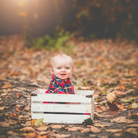 Charlie in the box by Jenny Hammer - Babies & Children Babies ( fall, baby, autumn, cute, boy, adorable )
