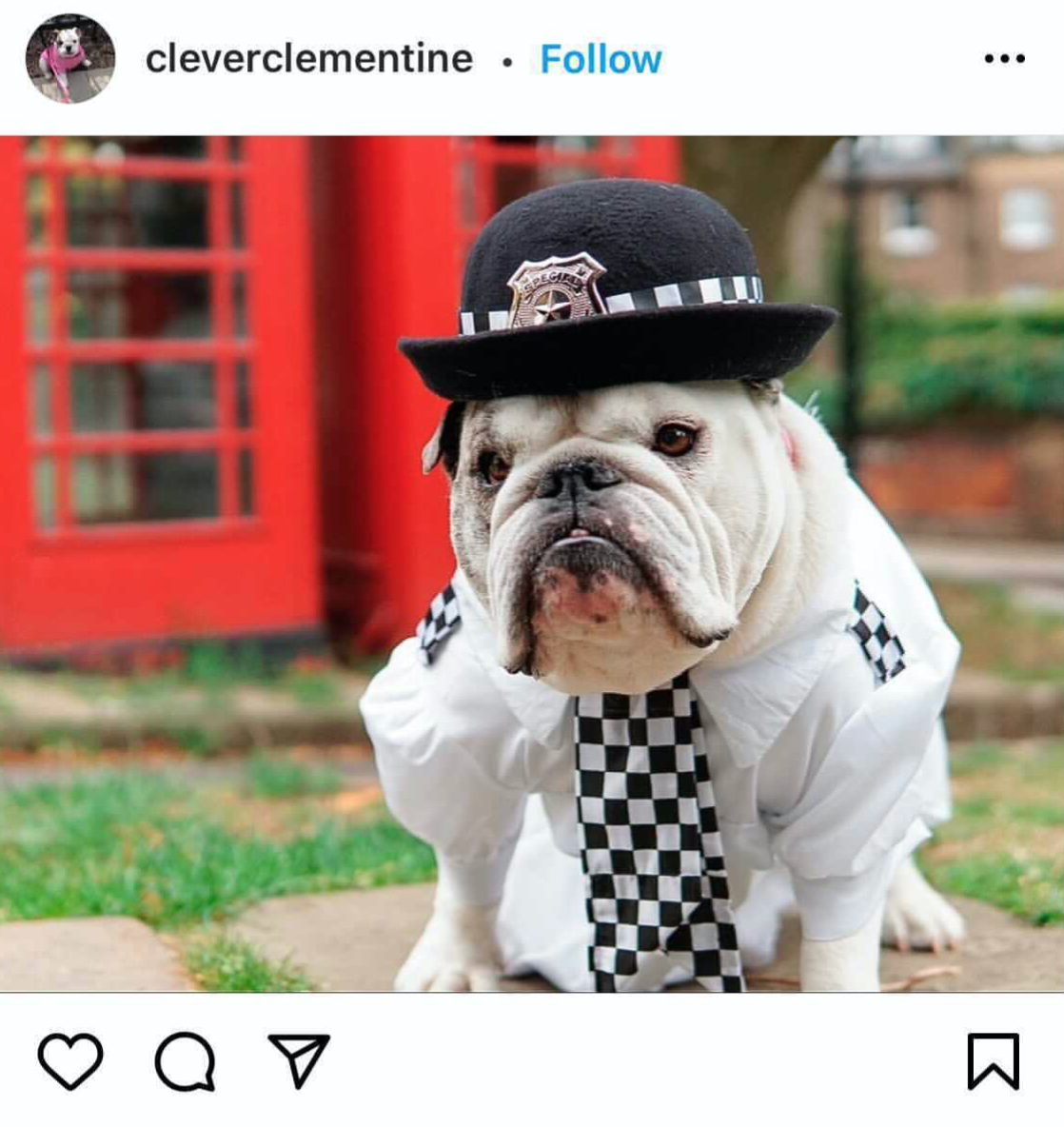 Halloween Costume Ideas For Dogs London Officer