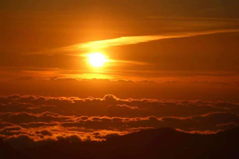 阿里山森林遊樂區&鄒族達邦部落&牛埔仔大草原