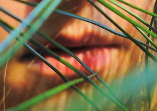 Photo: A Walk on November 6, 2011: Lips and Pine