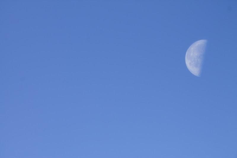 Moon di frenky