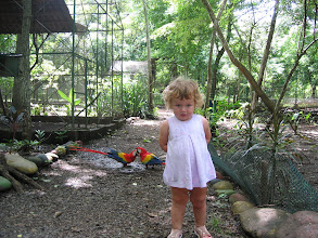 Photo: Charlotte with Scarlett Macaws at Monkey Park