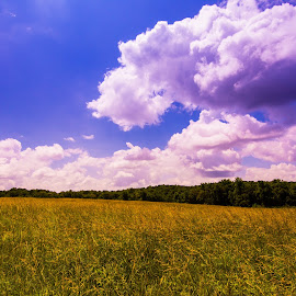 Warm Field by James Woodward - Landscapes Cloud Formations ( sky, georgia, sunrise, field, clouds,  )