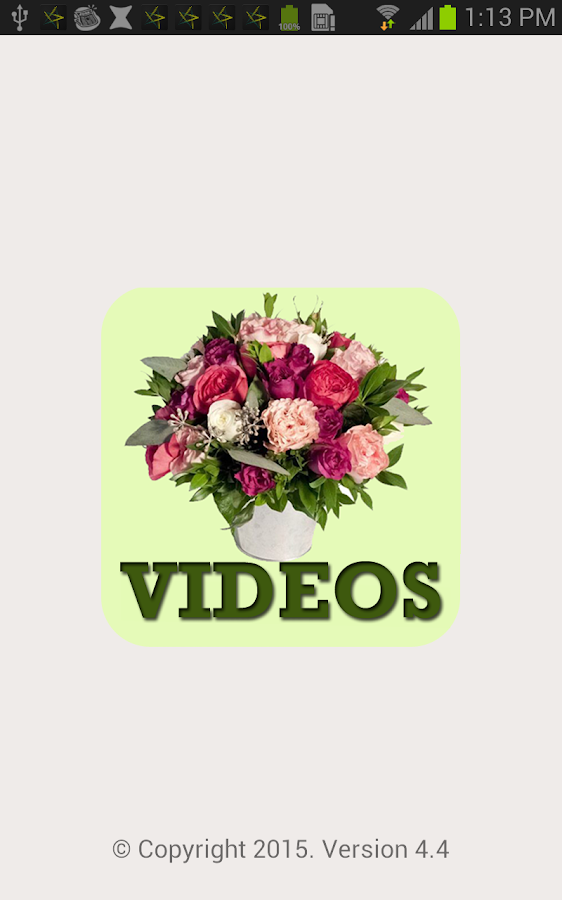 Bloomy Dutch Flower Arrangement With Tulips And Irises Video