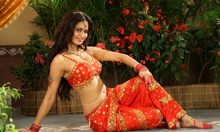 Meenakshi Dixit hot wallpaper, Meenakshi Dixit navel photos, Meenakshi Dixit in red saree