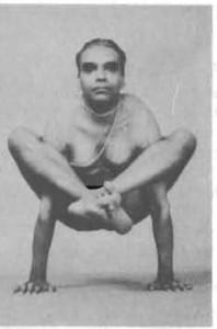 Bhujapidasana-Yoga-Pose-BKS-Iyengar-198x300.jpg