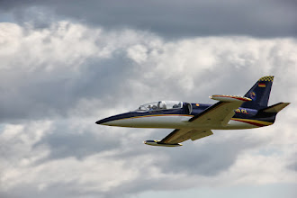 Photo: Aero L-39 Albatros / Airworld / 2.20 m