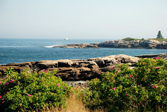 Photo: East Pond, Schoodic Point