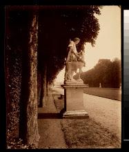 Photo: Versailles, Cyparisse par Flamen