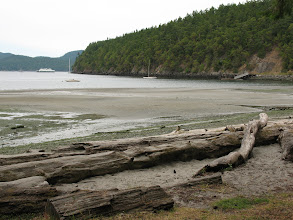Photo: Day 4: Beach at Odlin State Park, Lopez Island.