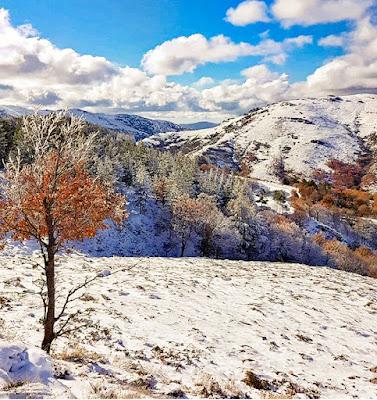 Sfumature d'inverno di mony29