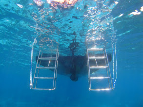 Photo: 幅広階段で上がりやすい