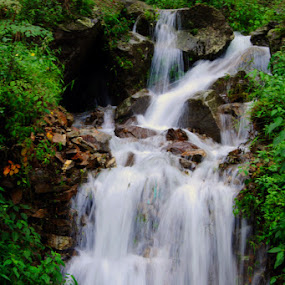 The Himalayan Torrent by Debdatta Chakraborty - Landscapes Waterscapes ( water, nature )