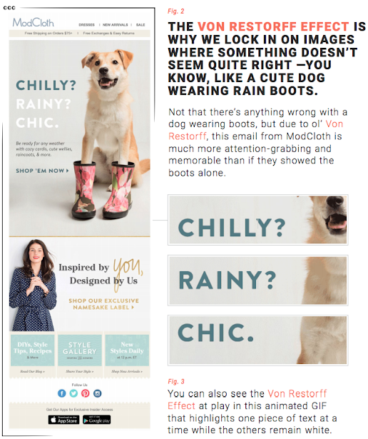 The Von Restorff Effect is why we lock in on images where something doesn't seem quite right - you know, like a cute dog wearing rain boots.