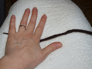 Photo: Lay a towel on your lap and lay the wool on the towel.  Roll it quickly between your hands, the towel and your lap, shaping it nicely.  It should be tapered on the ends and a bit thicker in the middle.