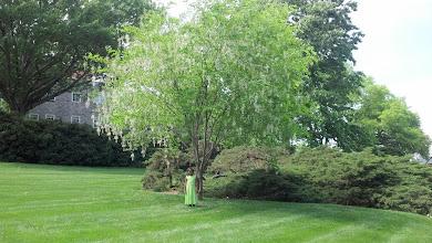 Photo: Kaleya under a tree