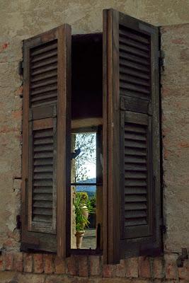 il giardino in una stanza di Fabrizio Franceschi