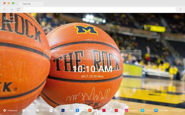 University of Michigan HD Sports Themes