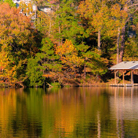 THE LAKE HOUSE by Jennifer  Loper  - Landscapes Waterscapes ( fall colors, reflections, oaks, lake, trees )