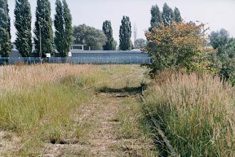 Photo: Pozostałości po bocznicy do Spomaszu {Toruń, ul. Pod Dębową Górą; 2003-09-19}