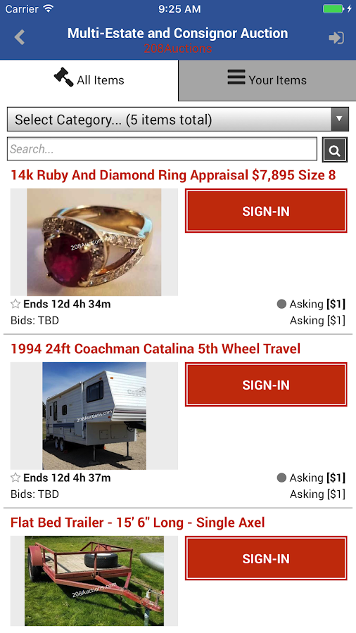 208 Auctions- screenshot