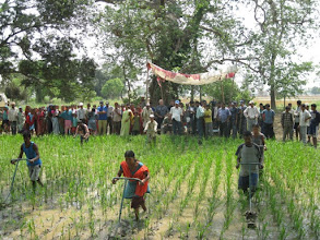 Photo: Local farmers of Lalbojhi VDC Kailali weeding in their field and Ambassador, Dr. Alexgender spachis and team observing the weeding activity.