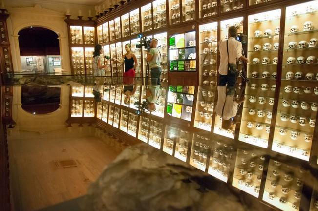 Exposición Biografías en 3D de momias del Museo Canario