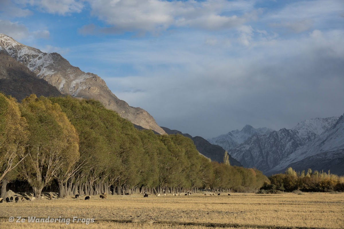 Travel to Tajikistan Pamir Highway and Wakhan Corridor // Fall Colors in the Wakhan Corridor