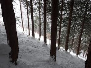植林の急斜面を登る(下を見る)